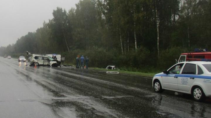 ДТП под Ярославлем с шестью погибшими: что известно на данный момент