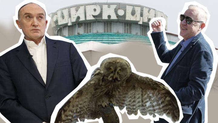 Забег в Казахстан, чучело совы и киска для губернатора: 1 апреля смеёмся над новостями