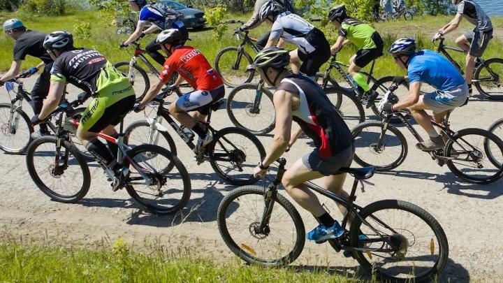 Восстановить велодорожку по шоссе Тюнина. Курганцы считают это важнейшим общегородским проектом