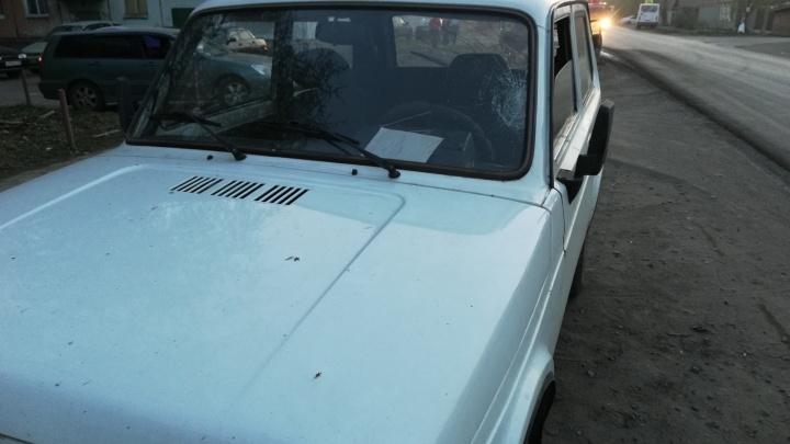 «Нива» сбила двоих детей — от сильного удара у машины разбилось лобовое стекло