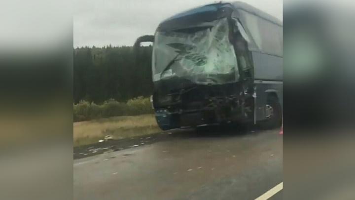 В Прикамье рейсовый автобус врезался на трассе в грузовик: пострадали четыре человека