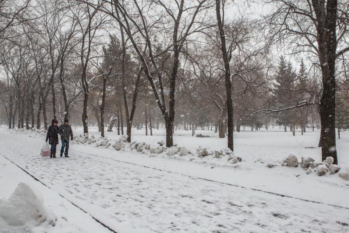 Жители Новосибирска не хотят покидать родной город
