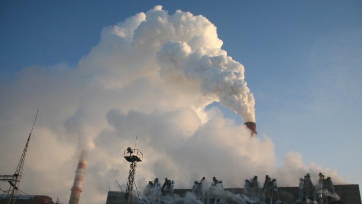 Энергетики попросили отдать им 43 га под Новосибирском под новый золоотвал