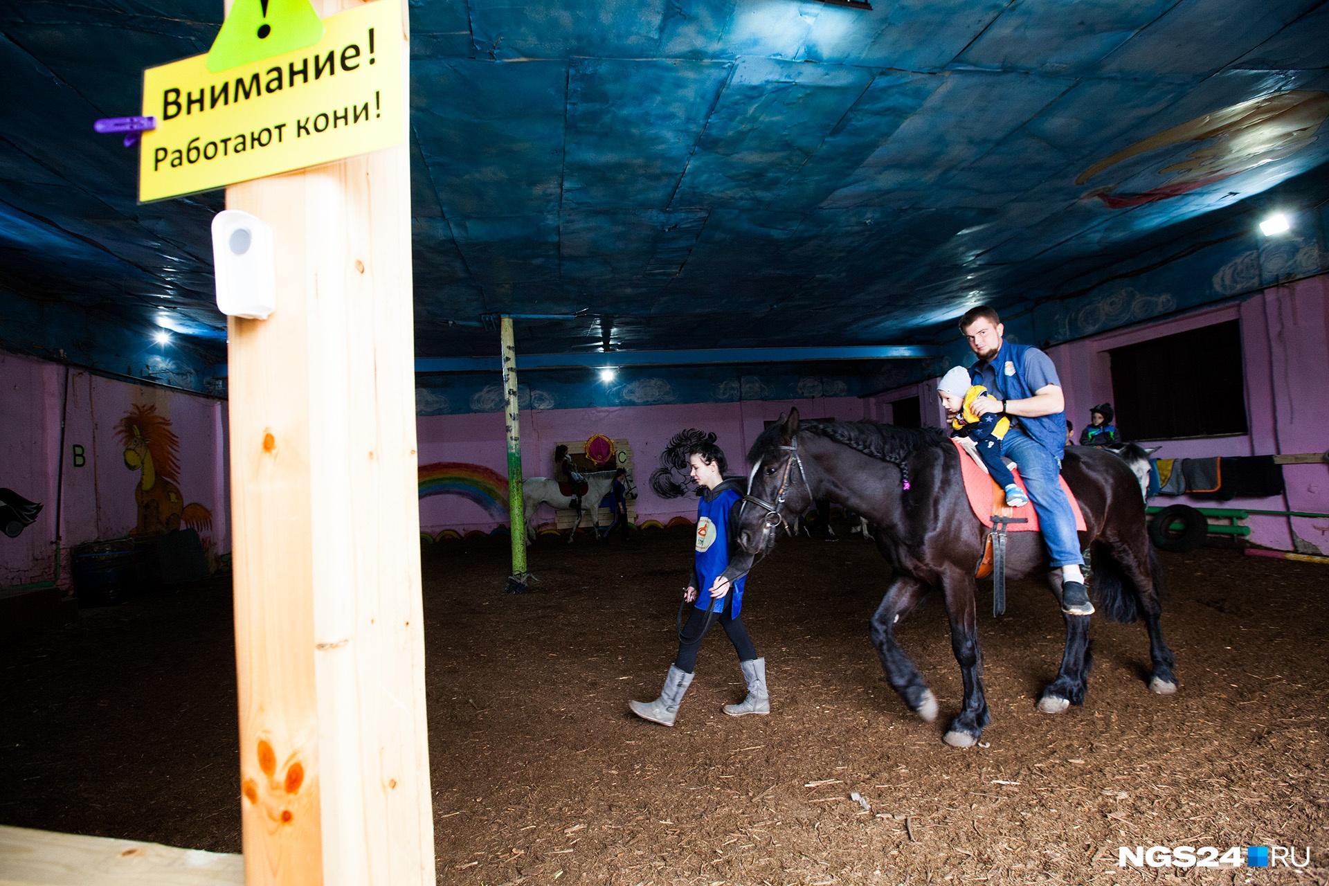 Лошади на манеже каждый день помогают детям чувствовать себя лучше. Конюшня работает как некоммерческая организация