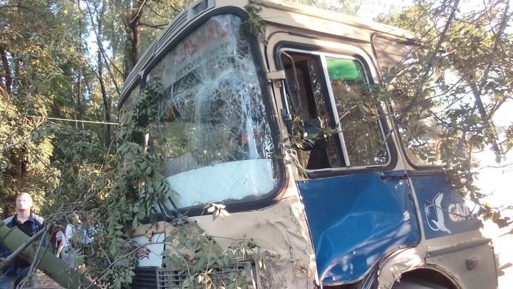 «Мужчина пропорол ногу чем-то, ещё один — голову»: в Челябинске маршрутка протаранила дерево