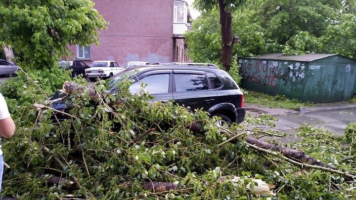 Потоп и разрушения: сильный ливень уронил деревья на машины и детские площадки