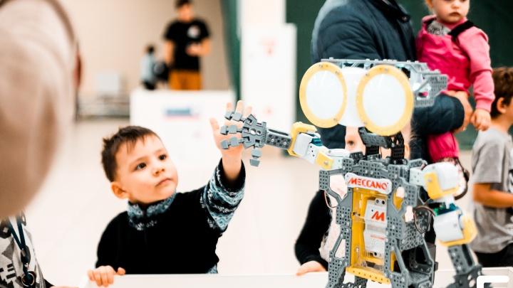 В «Сибирский молл» привезли роботов-животных, которые умеют злиться, и очаровательного робота Кики
