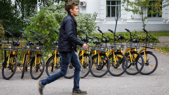 Будущее настало: в Волгограде появились первые станции общественных велосипедов
