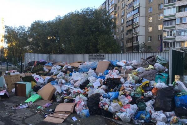 В редакцию 74.ru за утро понедельника сообщили более чем о 50 неубранных контейнерных площадках