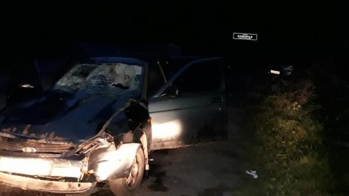 Полиция возбудила уголовное дело против водителя, сбившего семь человек в Городецком районе