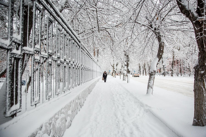 По прогнозам синоптиков, самым холодным будет январь