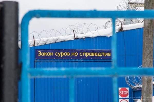 В первой половине 2017 года в России за террористическую деятельность было осуждено 205 человек