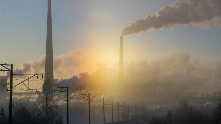 Омская птица, огненный закат и васильковое небо: десять лучших зимних фотографий