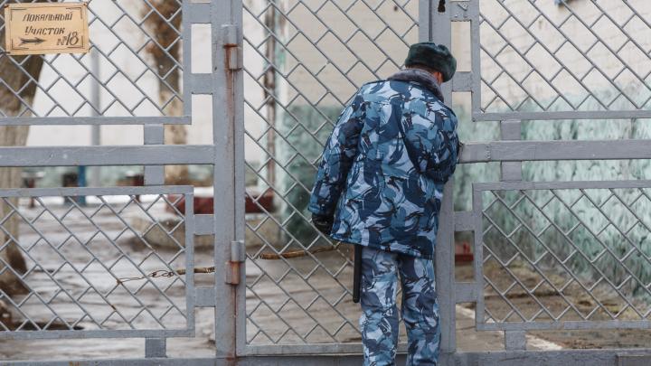 Волгоградец получил два года колонии за наезд на пристава