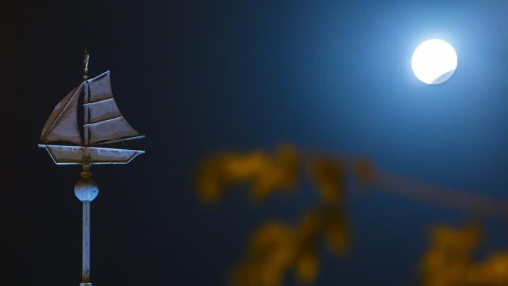 Волгоградцы увидят лунное затмение