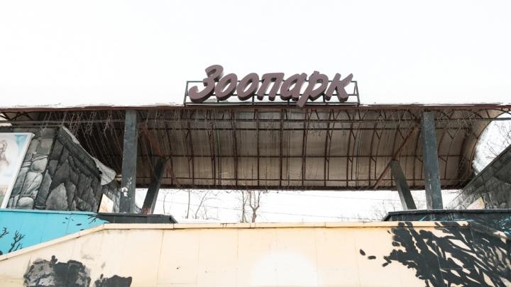 Территорию под существующим зоопарком в Перми предложили благоустроить для расширения набережной