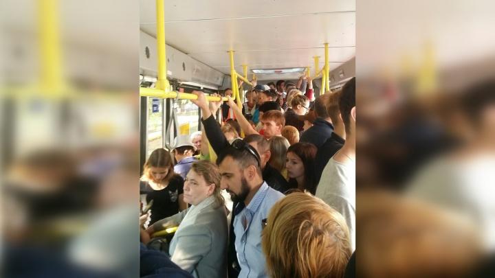 «Невозможно влезть»: самарцы опять пожаловались на давку в автобусе № 50