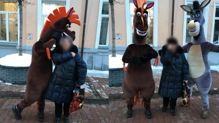 В Санкт-Петербурге создали петицию против «коллег» нижегородских коней с Покровки