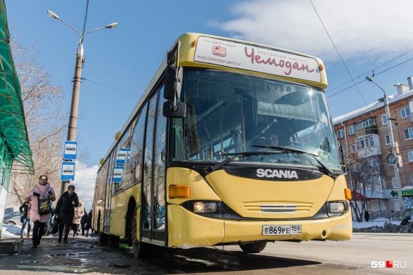 Автобусы будут ходить в Закамск и на Гайву в прежнем режиме