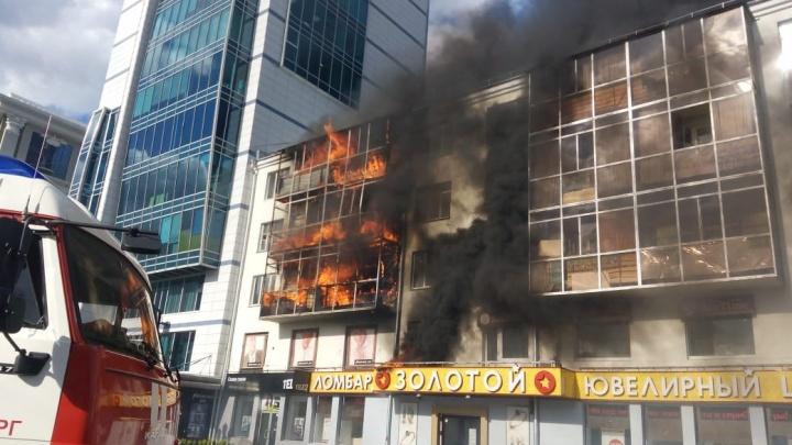 В МЧС назвали причину пожара на Вайнера, где котика спасли искусственным дыханием