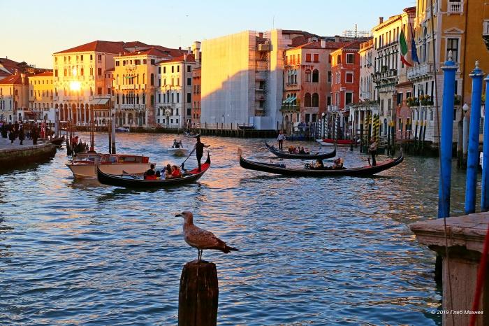 Глеб Махнев был в Венеции три дня