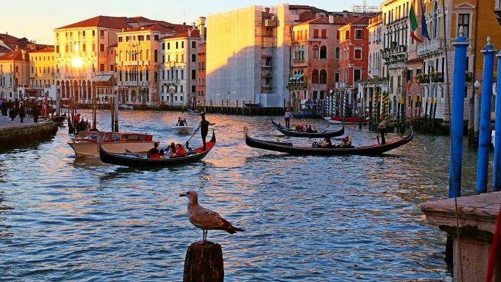 «Невероятная атмосфера романтизма и молодости»: 10 завораживающих фото Венеции, снятых уральцем