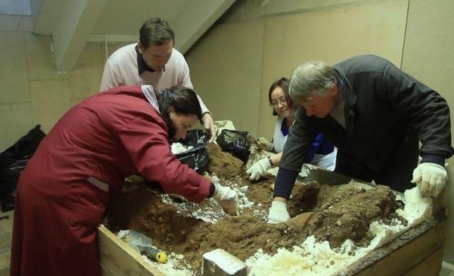 Экспедиция продолжается. Пермские палеонтологи отправятся на раскопки трогонтериевого слона