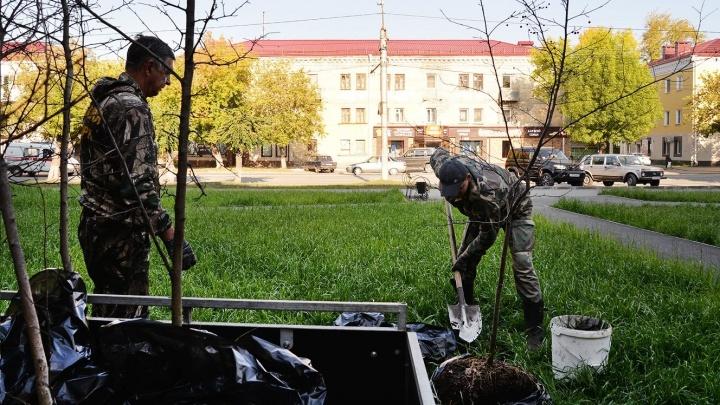 В сквере на Коли Мяготина высадили деревья и скоро вернут отремонтированную надпись «Я люблю Курган»
