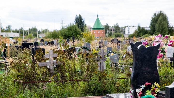 Мёртвому упасть негде. Что делать ярославцам, когда закончатся места на последнем кладбище