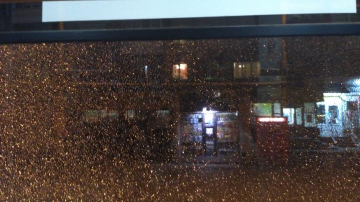 На улице Гурьевской обстреляли трамвай №13