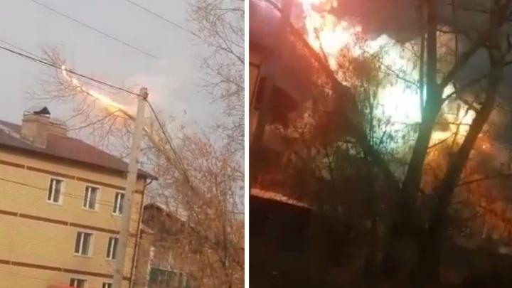 В Новосибирской области дерево упало на провода и начало метать молнии. Очевидцы сняли видео