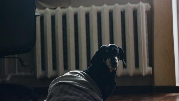 В доме, который пришлось расселять из-за отсутствия тепла, наконец дали отопление