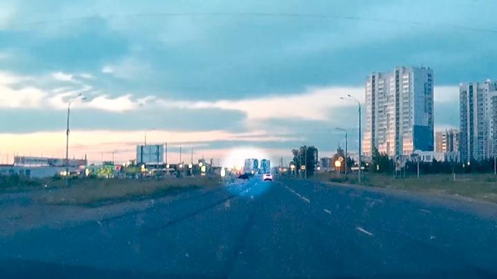 «Это уже не мимимишное животное»: на дорогах Челябинска появились лоси