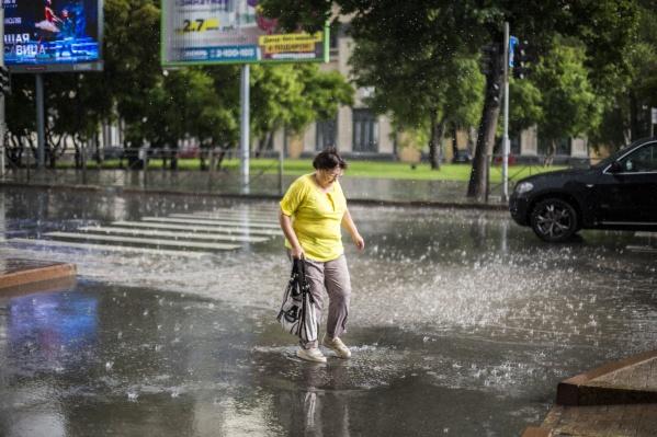 Синоптики считают, что в ближайшие дни погода в Новосибирске останется дождливой, местами возможны грозы