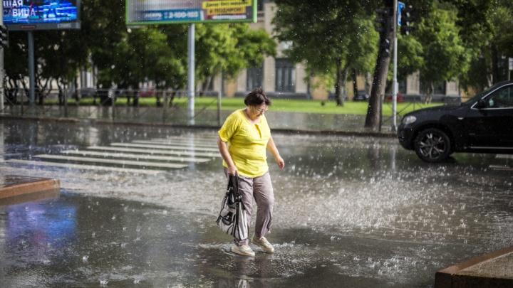 Синоптики пообещали новосибирцам дождливые выходные