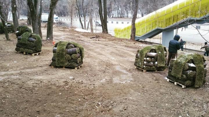 Сроки поджимали: ростовские чиновники объяснили, почему решили укладывать газоны зимой