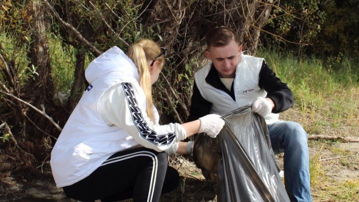 Омичи собрали 2 тонны мусора во время субботника на «Зелёном острове»