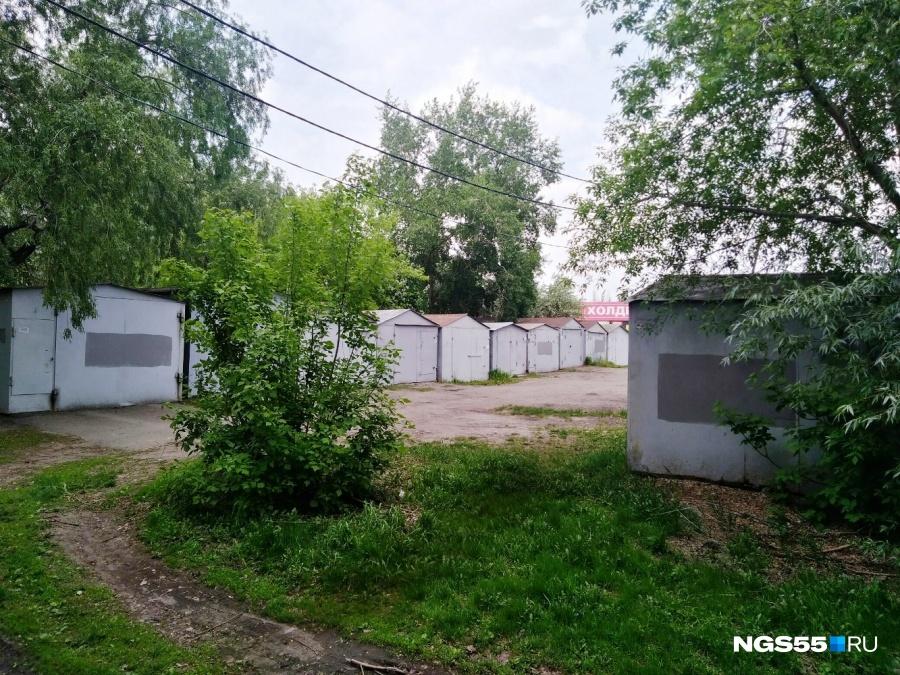 ВОмске разыскивают мать, бросившую новорожденную девочку около гаражей