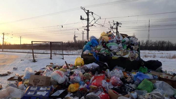 «Помойка, расти!»: в Волгограде с прошлого года ни разу не убрали мусорку с видом на «Родину-мать»