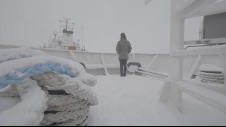 Пилот, водитель, судовой маляр: в Архангельске снимают фильм о неженских профессиях северянок