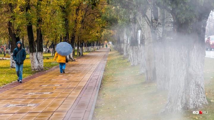 Экстренное предупреждение МЧС: в Самарской области ожидают заморозки и сильный ветер