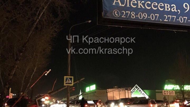 Алексеева встала колом из-за уронившего столбы грузовика