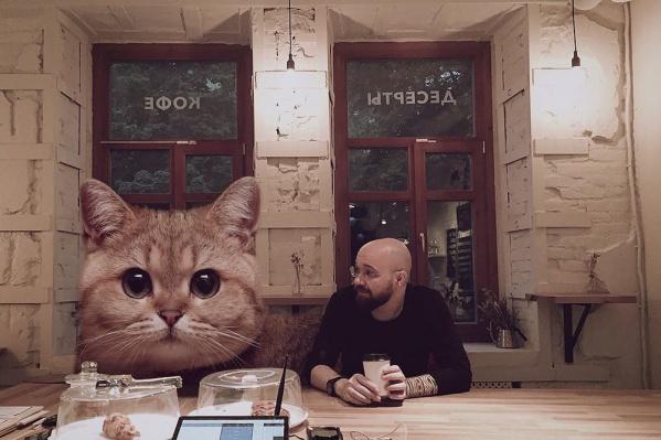 В инстаграме Андрея нет ни одного снимка, в котором бы не было котиков
