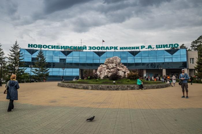В последнее воскресенье августа Новосибирский зоопарк устроит грандиозный праздник