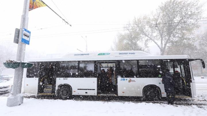 Непогода заморозила трассы: более 60 автобусных рейсов отменили в Ростовской области