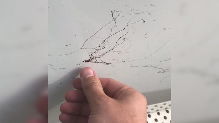 Чёрным по белому: челябинцу испачкали гудроном BMWво время ремонта дороги