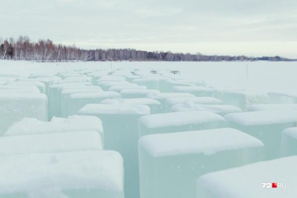 Лед для продажи специально «выращивают»