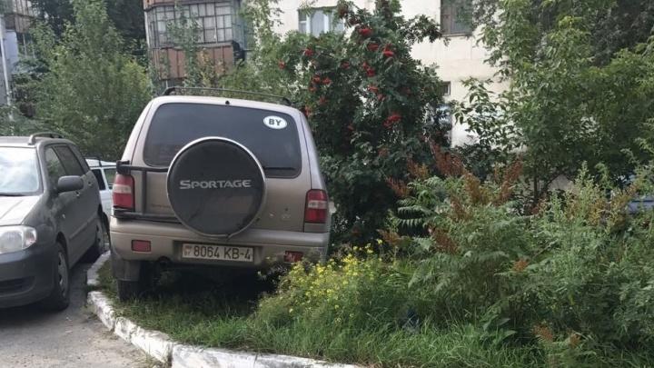 «Я паркуюсь, как...»: KIA под кустом рябины и автохамы, заезжающие на тротуары в тюменских дворах