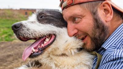 Собаки умеют плакать: истории 14 псов из приюта, которые стали не нужны хозяевам
