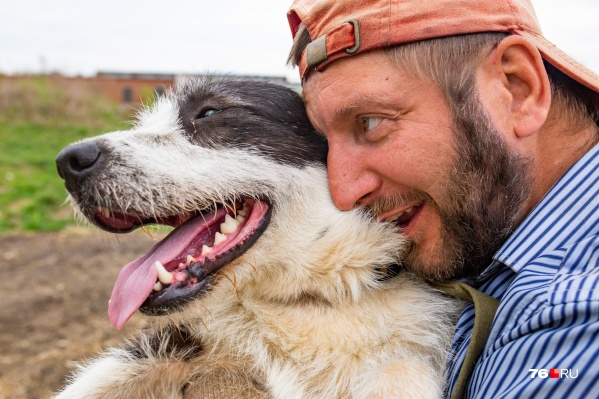 В приюте САХа сейчас живёт 60 собак. Всем им нужен дом.